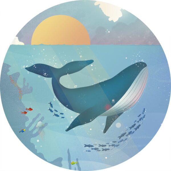 naklejka ścienna w kształcie koła Wieloryb